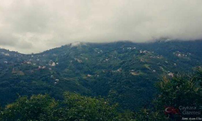 Ulucami (Köyü) Mahallesi