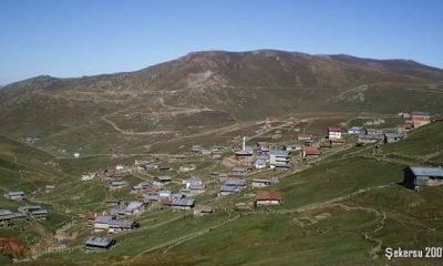 Şekersu (Köyü) Mahallesi.