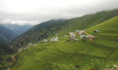 Arpaözü (Köyü) Mahallesi.