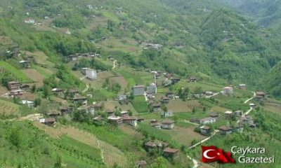 Baltacılı (Köyü) Mahallesi.