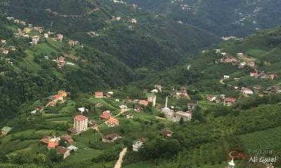 Yeşilalan Mahallesinden Fatma Kalyoncu vefat etti