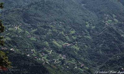 Yeşilalan mahallesinden Rahime Bakal vefat etti