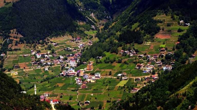 Köknar (Köyü) Mahallesi.