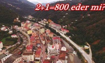Çaykara'da 2+1=800 eder(!)