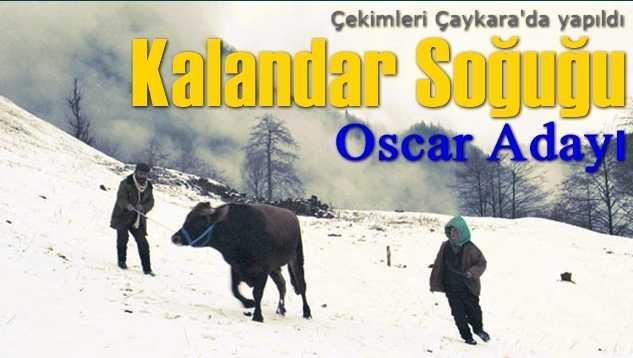Kalandar Soğuğu Oscar'a aday