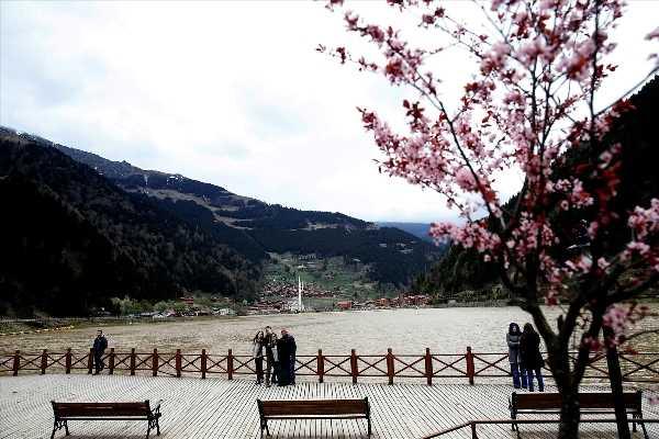 Tok: Uzungöl'de hedef 12 ay turizm 3