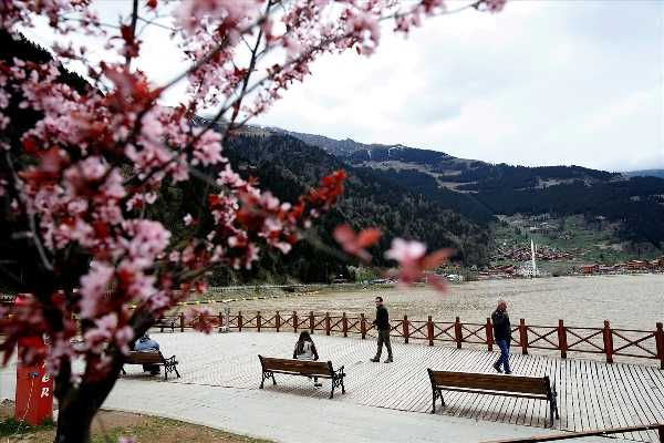 Tok: Uzungöl'de hedef 12 ay turizm 5