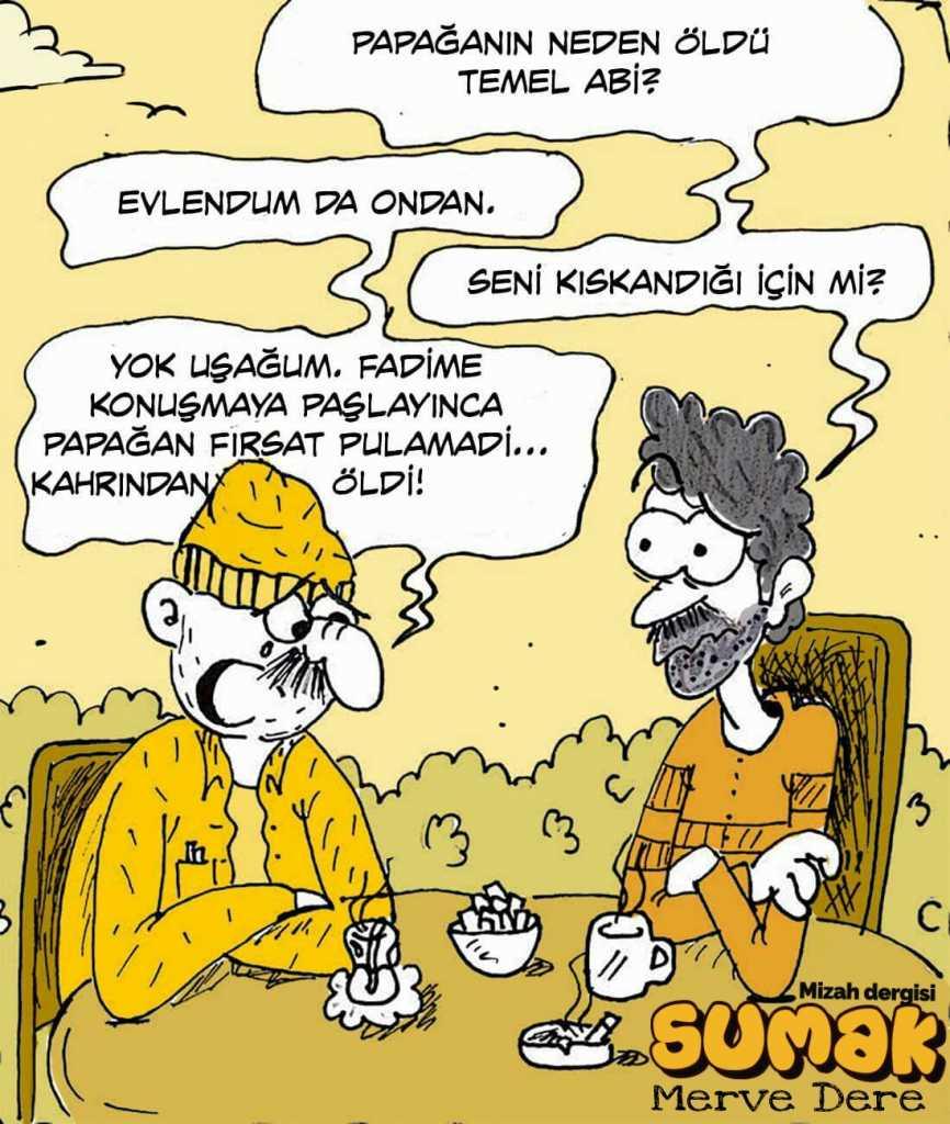 Karikaturistan 3