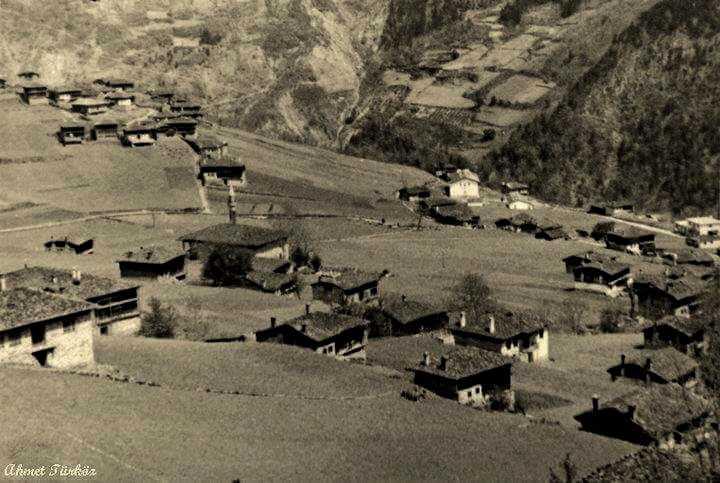 Tarihe derin bir yolculuk: Şinek'te altı yıl 1