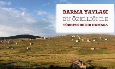 Barma Ağaçbaşı Turbalığı bir dünya mirası