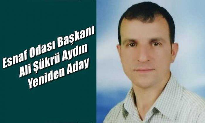 Ali Şükrü Aydın yeniden başkanlığa aday