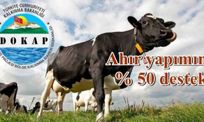 DOKAP'tan hayvancılığa yüzde elli hibe desteği