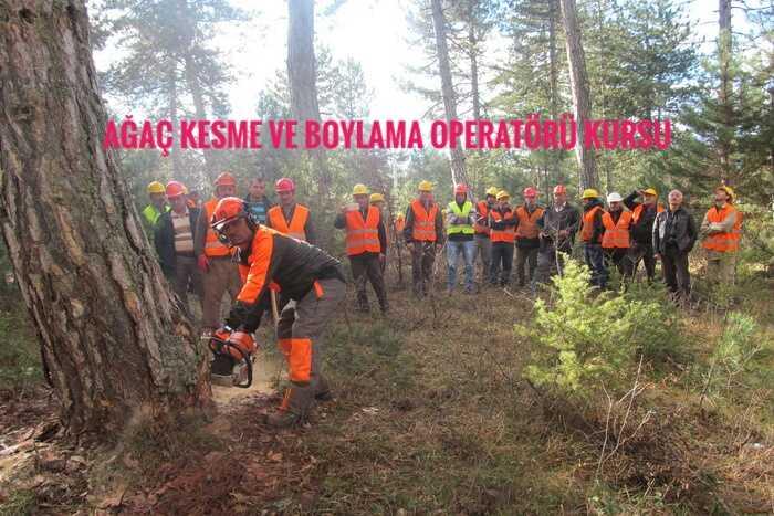 Ağaç Kesme ve Boylama Operatörü Kursu