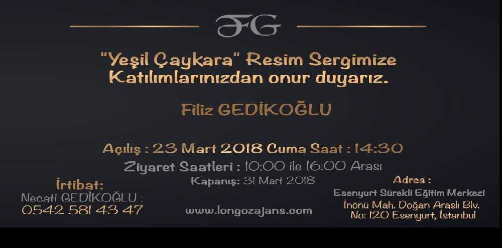 İstanbul'da Yeşil Çaykara resim sergisi 1