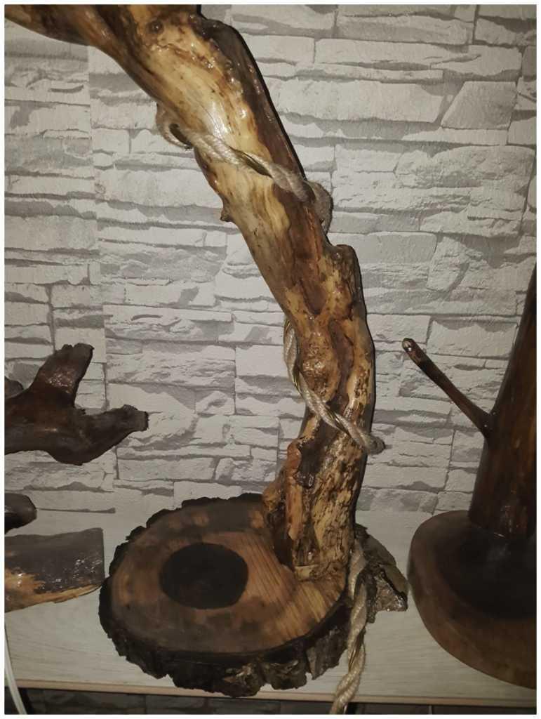Ağaç köklerini sanat eserine dönüştürüyor 12