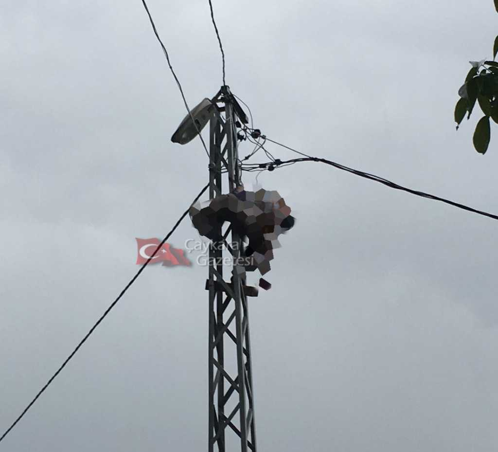 Şahinkaya'da elektrik can aldı! 3