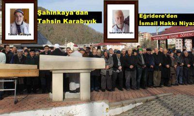 Çaykara'da iki asırlık çınar'a son görev