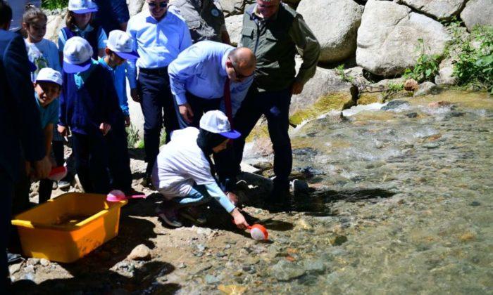 Solaklı Deresine 10.000 yavru balık bırakıldı