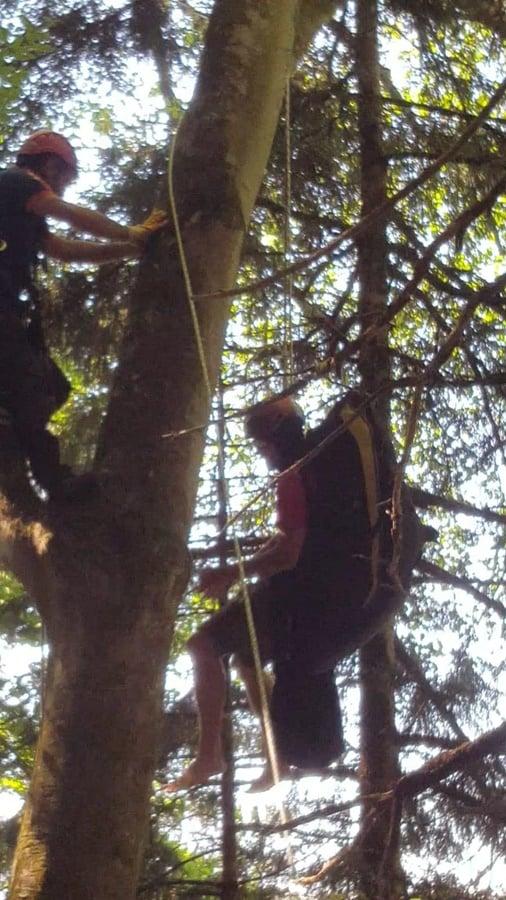 Uzungöl'de yamaç paraşütçüsü iniş esnasında ağaca asılı kaldı. 1