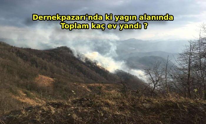 Dernekpazarı'nda Yangında Kaç Ev Yandı ?