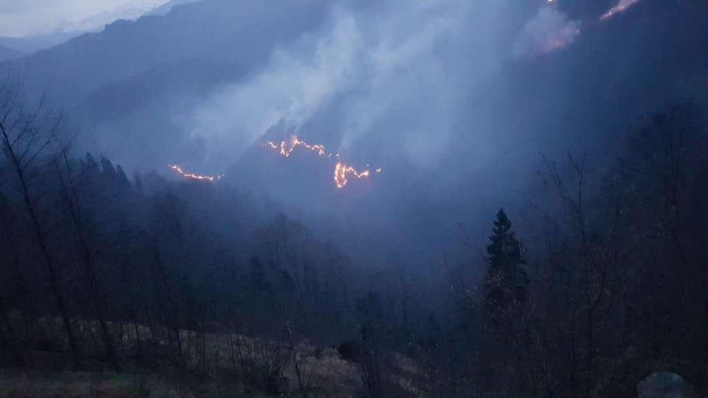 Holo'da iki gündür ormanlar yanıyor! 3