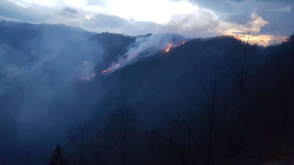 Holo'da iki gündür ormanlar yanıyor! 4