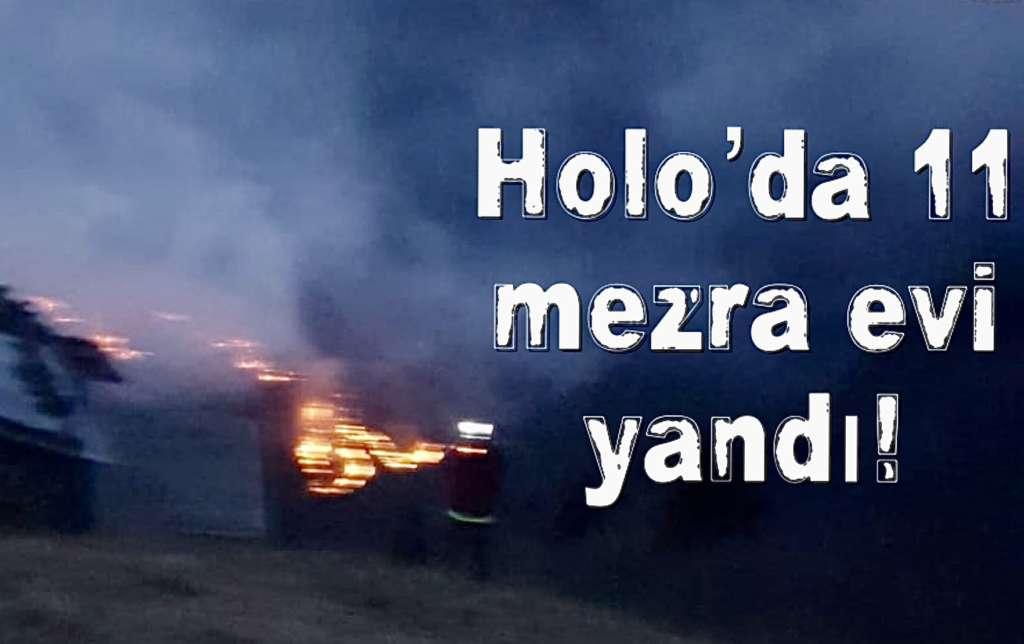 Holo'da iki gündür ormanlar yanıyor!