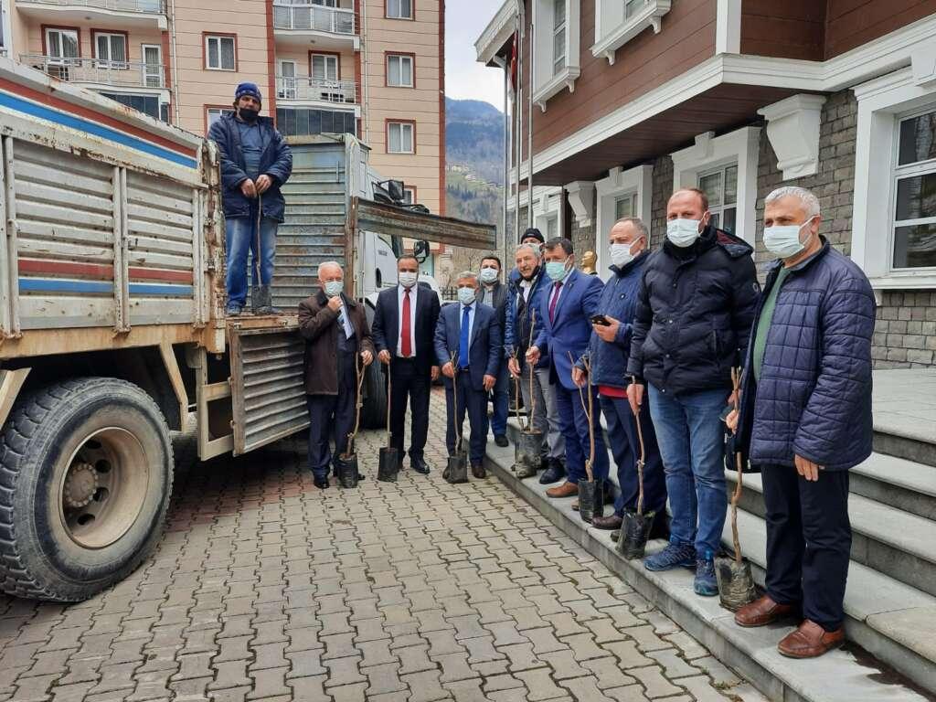 Trabzon Çaykara Dernekpazarı Derneği 1300 fidan dağıttı 2