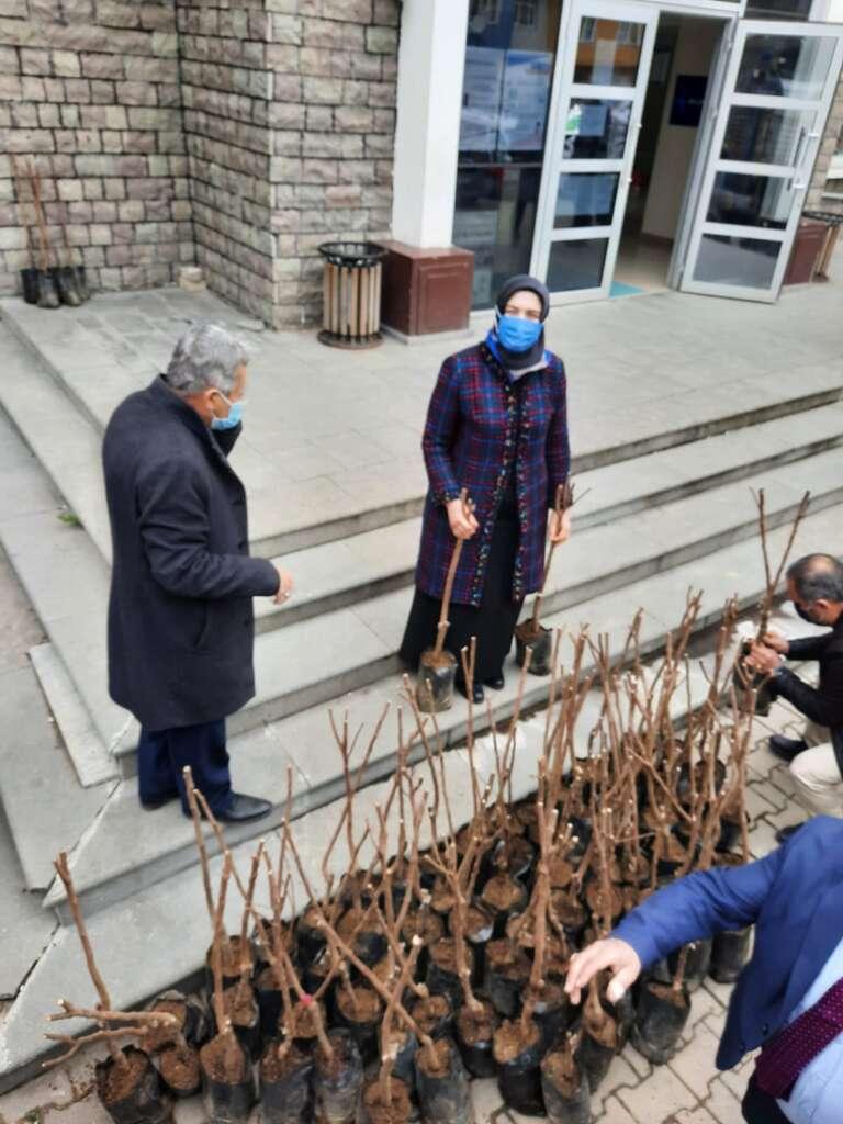 Trabzon Çaykara Dernekpazarı Derneği 1300 fidan dağıttı 3