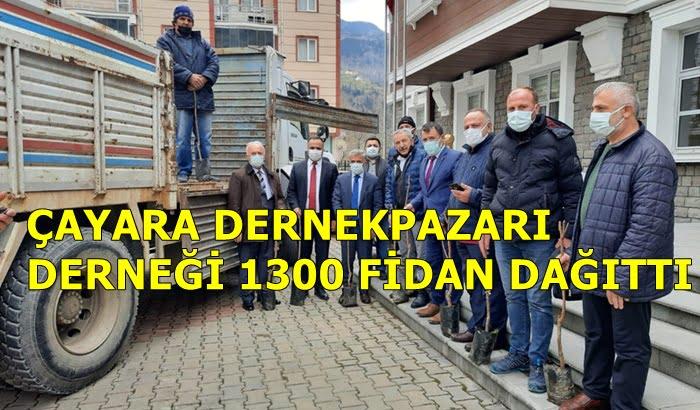 Trabzon Çaykara Dernekpazarı Derneği 1300 fidan dağıttı