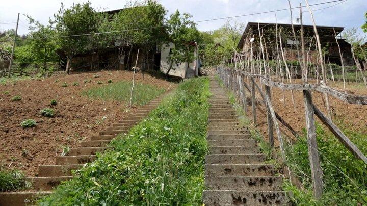 Komşuların 'inat merdivenleri': Aralarında 1 metre mesafede 2 merdiven yaptılar