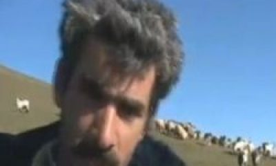 Limonsuyu'nda Bir Çoban