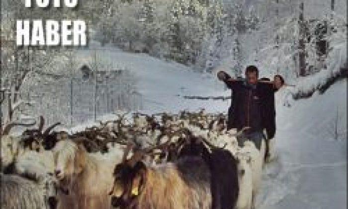 Kar Geldi Koyunculara Köy Yolu Göründü