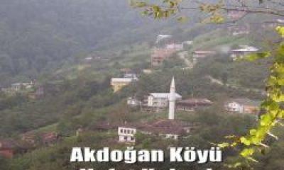Akdoğan Mahallesinden Naime Taşkın Vefat Etti
