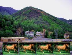 Çaykara'da At Çiftliği Yapılıyor