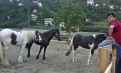 Çaykara'da Atlar Koşmaya Başladı