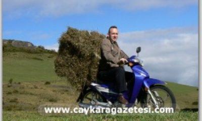 Otları Motorsikletle Taşıdı