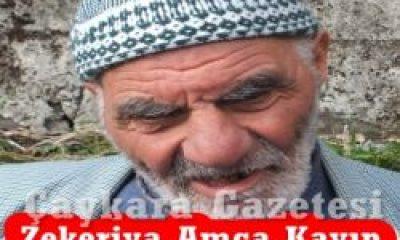 Zekeriya Yilmaz Kayıp